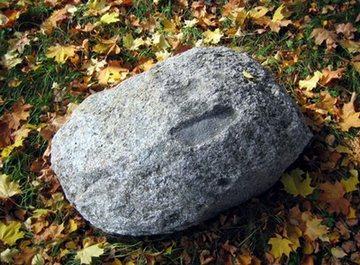 Камінь в лісі
