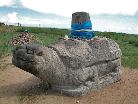черепаха в Каракоруме