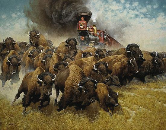 Стадо бизонов