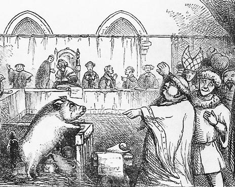 суд над животными