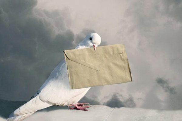 Голубина пошта