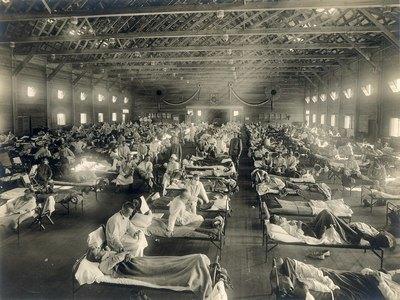 Эпидемия испанского гриппа 1918-1920
